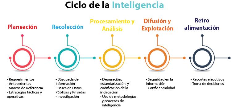 Ciclo de la Inteligencia